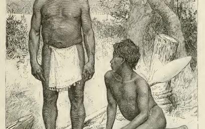 Imaginarios europeos del Orinoco indígena en el Siglo XIX